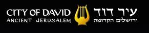 שיווק באינטרנט - לוגו של עיר דוד